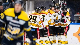 Luleå celebrating a goal against HV71