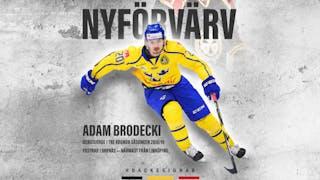 Adam Brodecki, Brynäs IF