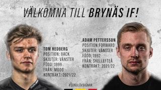 Tom Hedberg, Adam Pettersson, Brynäs IF